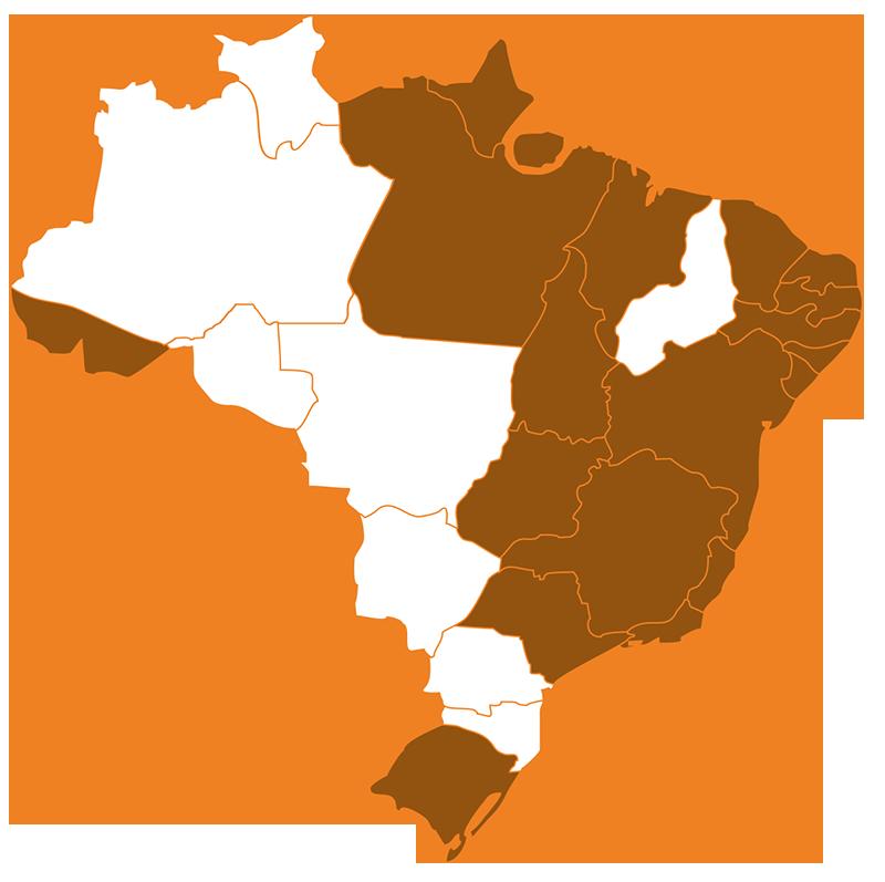 Atuação no Brasil